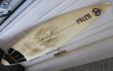 Tabla Surf Polen 6' 2