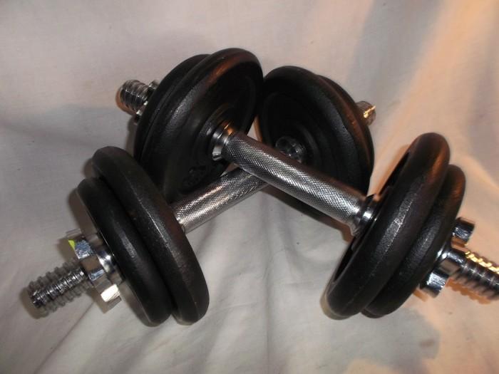 Mancuernas Fitness 20 Kg en