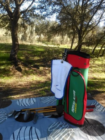 palos de golf y bolsa Royal kids en