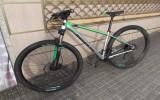 Bicicleta Focus Black Forest 29r