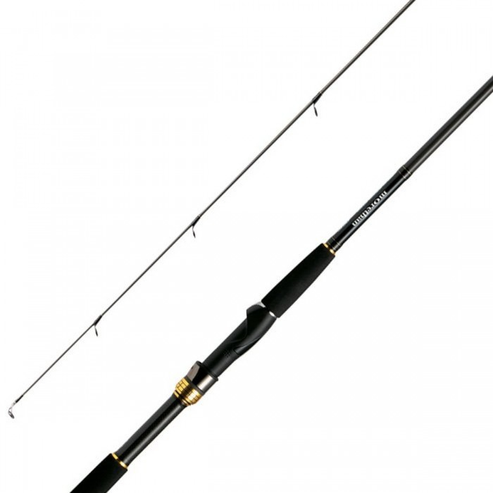 Caña Daiwa Morethan AGS 99MH Blue Backer